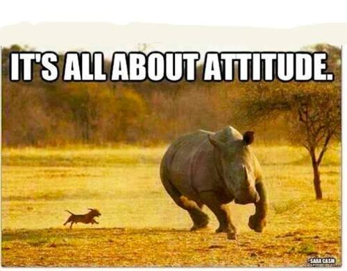 It's all about attitude!!! Via #RinaHattingh on #Facebook
