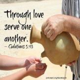 love-serve
